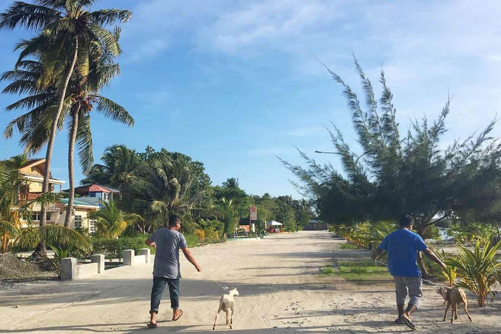 Viajar a Maldivas: cómo llegar a Gulhi y Maafushi
