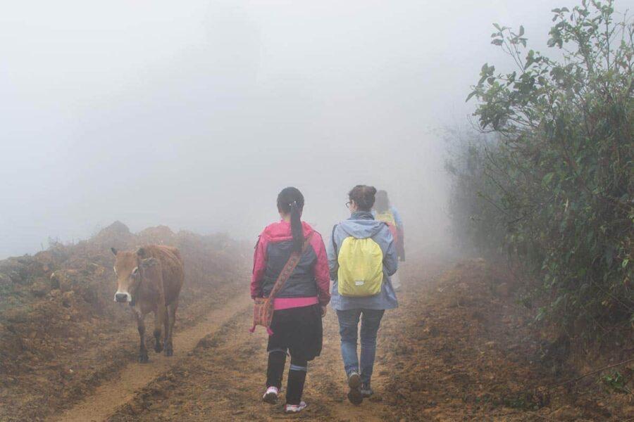 trekking por libre en Sapa