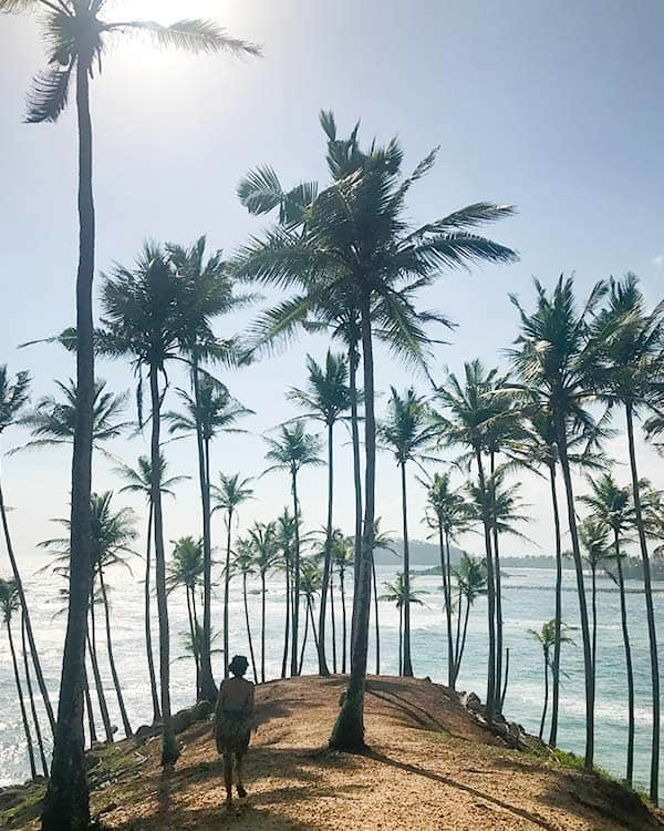 Rodeada de palmeras en Sri Lanka