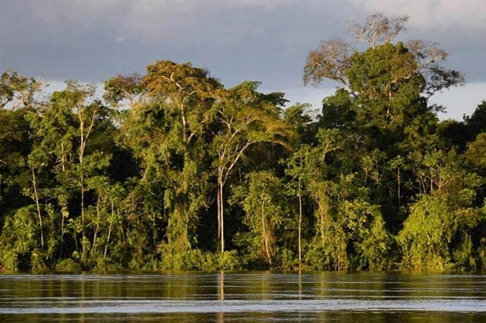 Amazonas en Colombia
