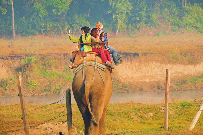 No apoyes el turismo animal