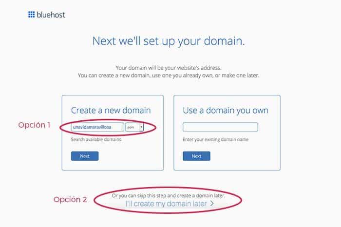 Seleccionar dominio en Bluehost